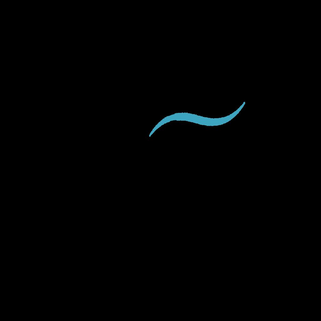 Logo-Allende-los-Mares-Stella-Oceani